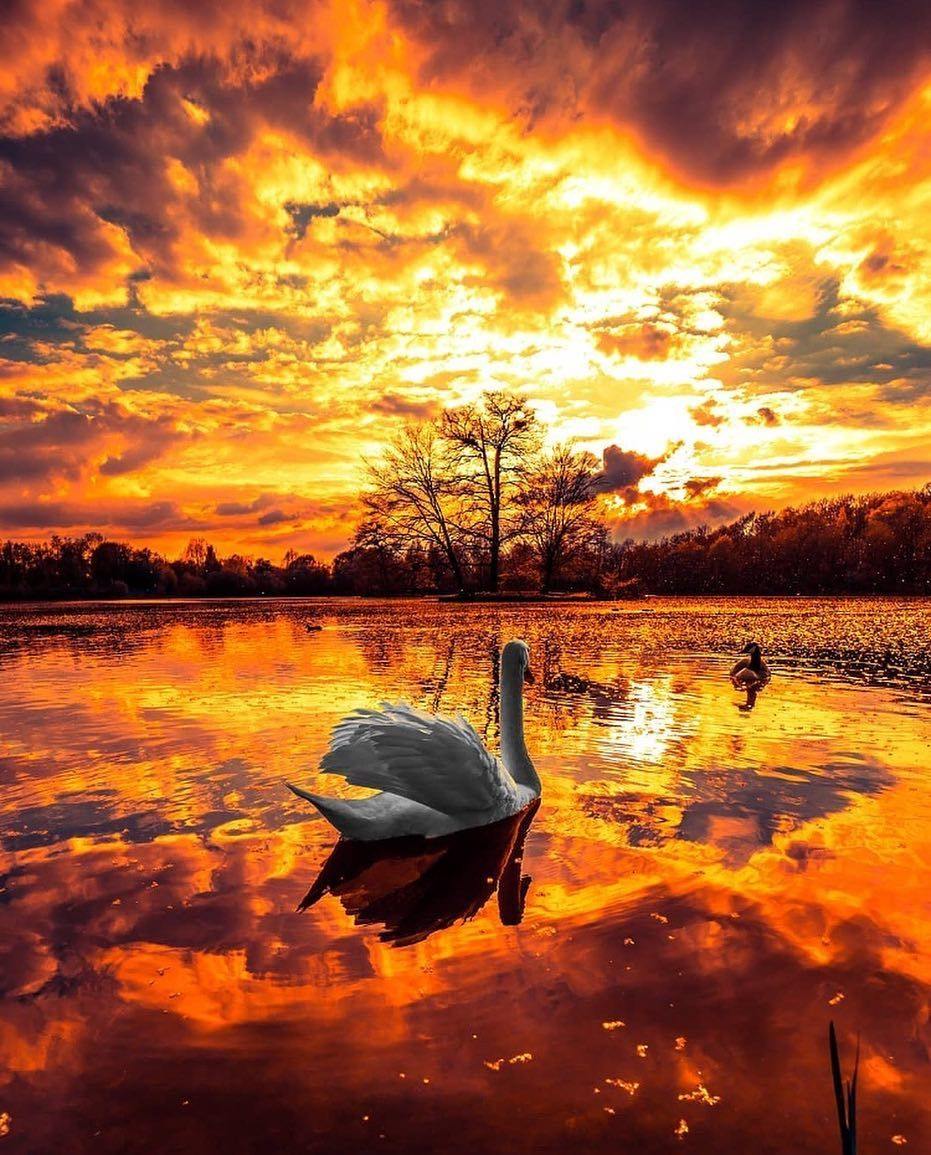 This Is How A Sky On Fire Looks Like From Foroureternalsouls Landscapes Scenery Landscape Redsky Landscapephotography Looks Fotos Look