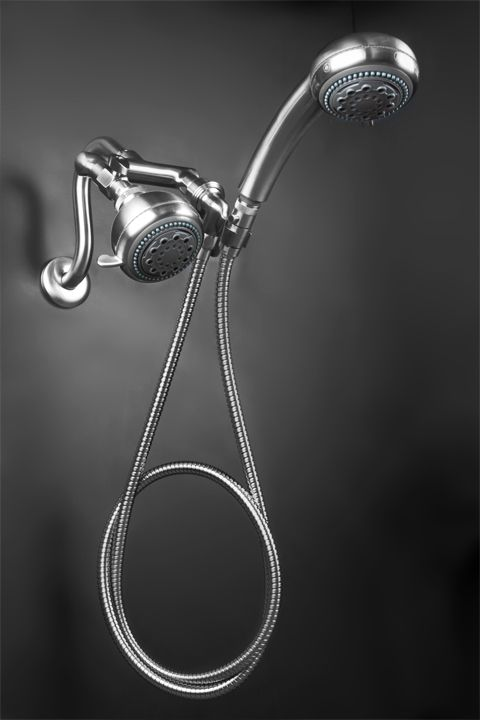 Brushed Nickel Mermaid Shower The Best of Both Worlds A Great ...