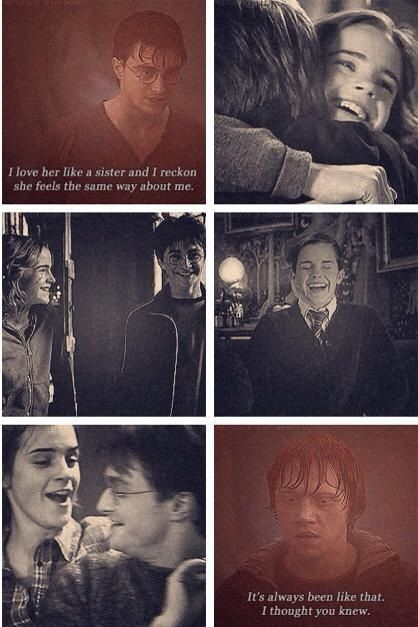 "...""like a sister."" Not too many people appreciate the beauty of Harry's relationship with Hermione... she may love Ron, but Harry is her closest friend."