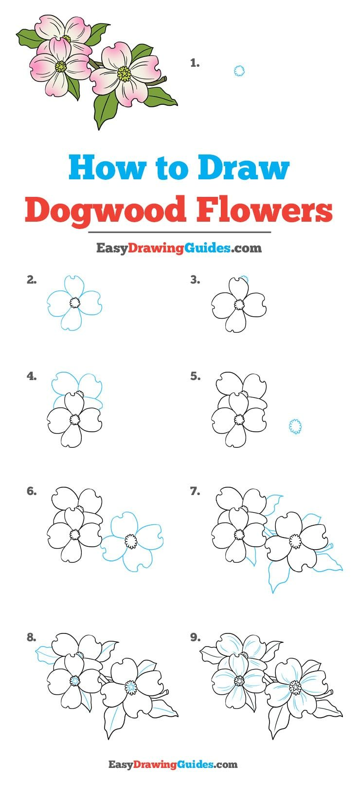 How to draw dogwood flowers really easy drawing tutorial crafts