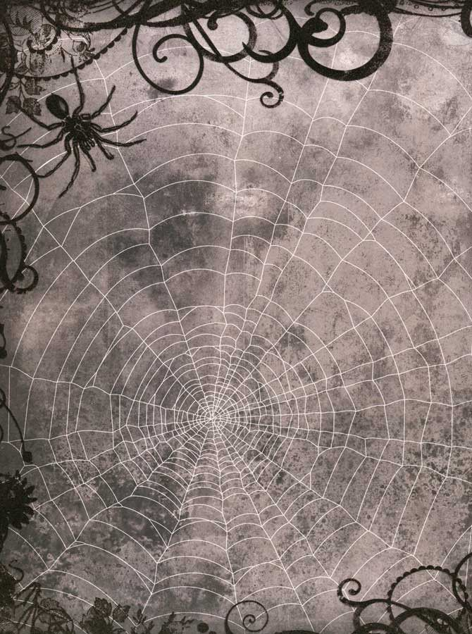 8063 Halloween Spider Web Backdrop Worldwideweb Pinterest Products - halloween backdrop