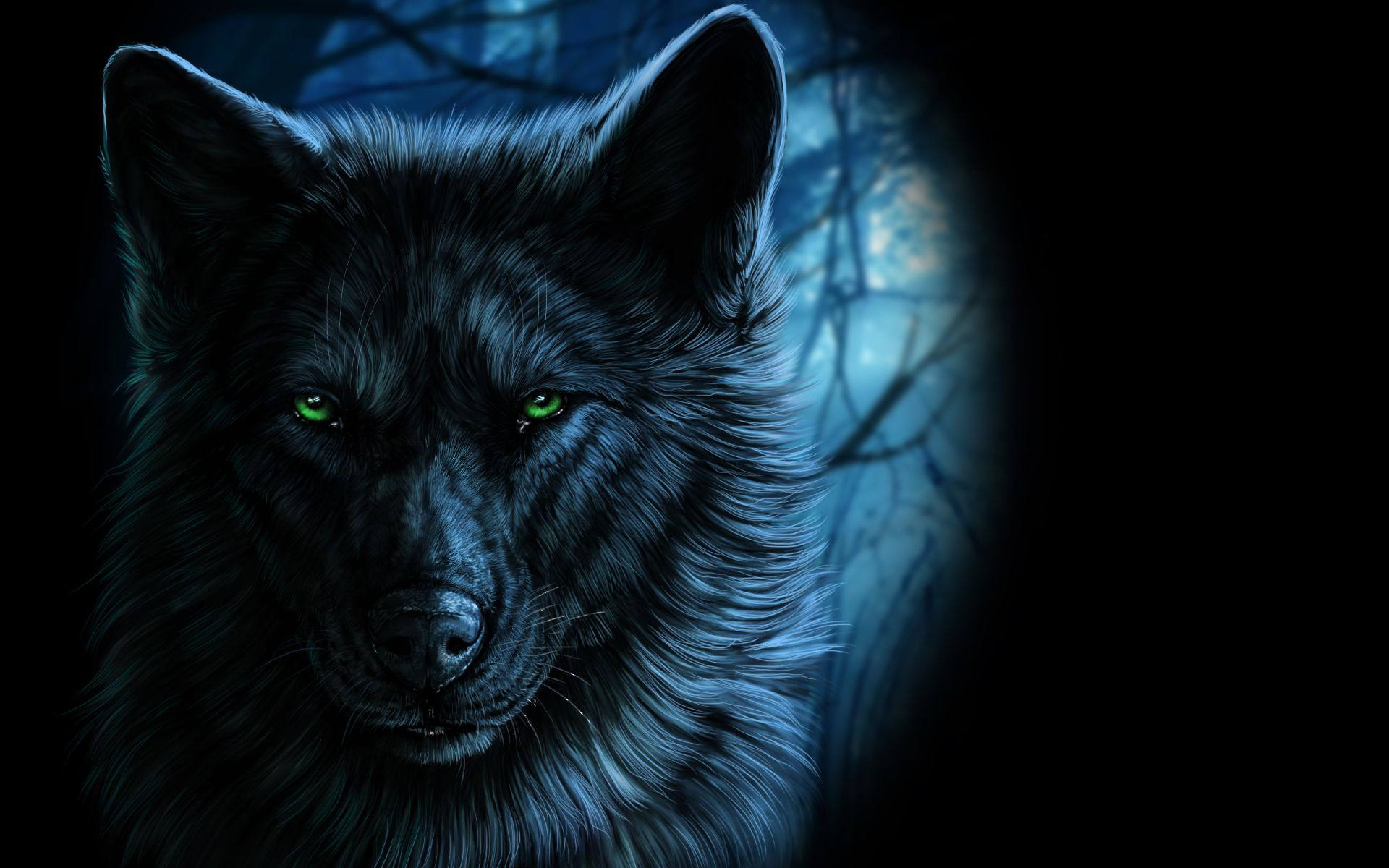 Wolf Eyes In The Dark Fantasy Portrait Of Wolf With Green Eyes In The Dark 4k Hd Fantasy Wolf Fantasy Art Men Wolf Images