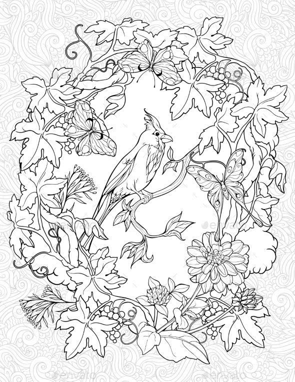 - Coloring Page With Butterflies And A Small Bird Bird Coloring Pages, Coloring  Pages, Animal Coloring Pages