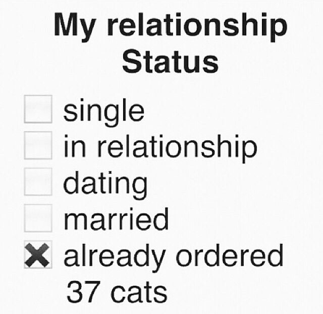 Status for online dating