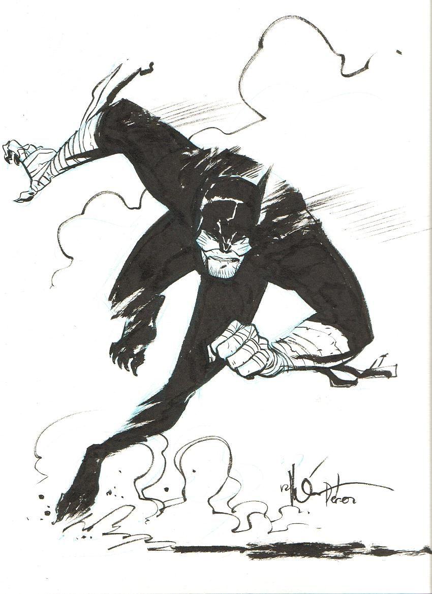 Wildcat by Ramon Perez (Toth homage)