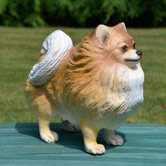 Pomeranian Life Size Pomeranian Dog Statue 14h Item 49073 Price