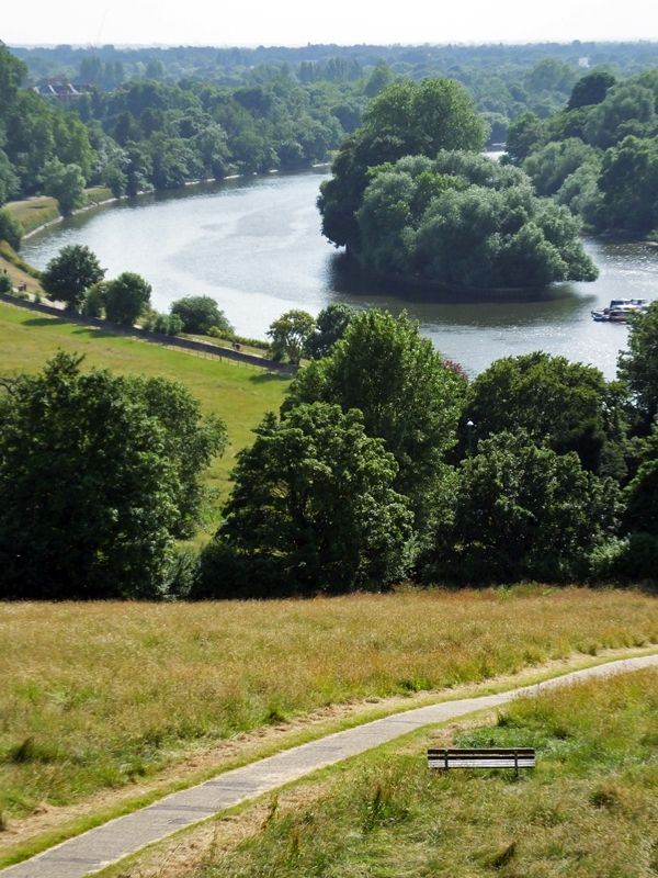 #View of the #Thames from #Richmond #Hill in summer
