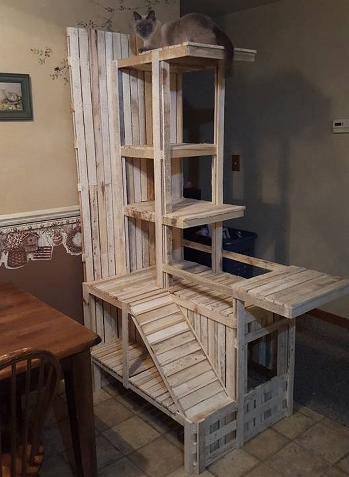 Great Recycled Wood Pallet Amazing