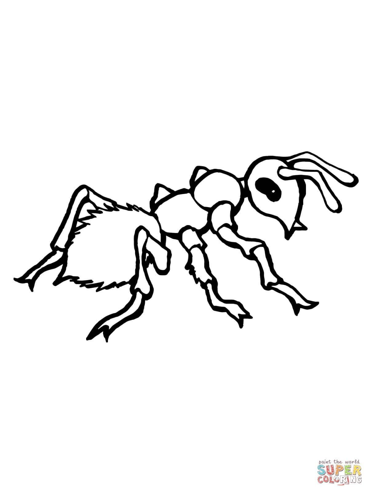 A Is For Ant Coloring Page Insect Coloring Pages Coloring Pages Super Coloring Pages