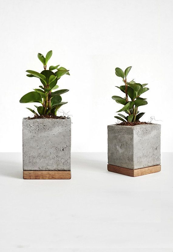 Photo of Cement planter with wooden base square concrete pot – do it yourself decoration