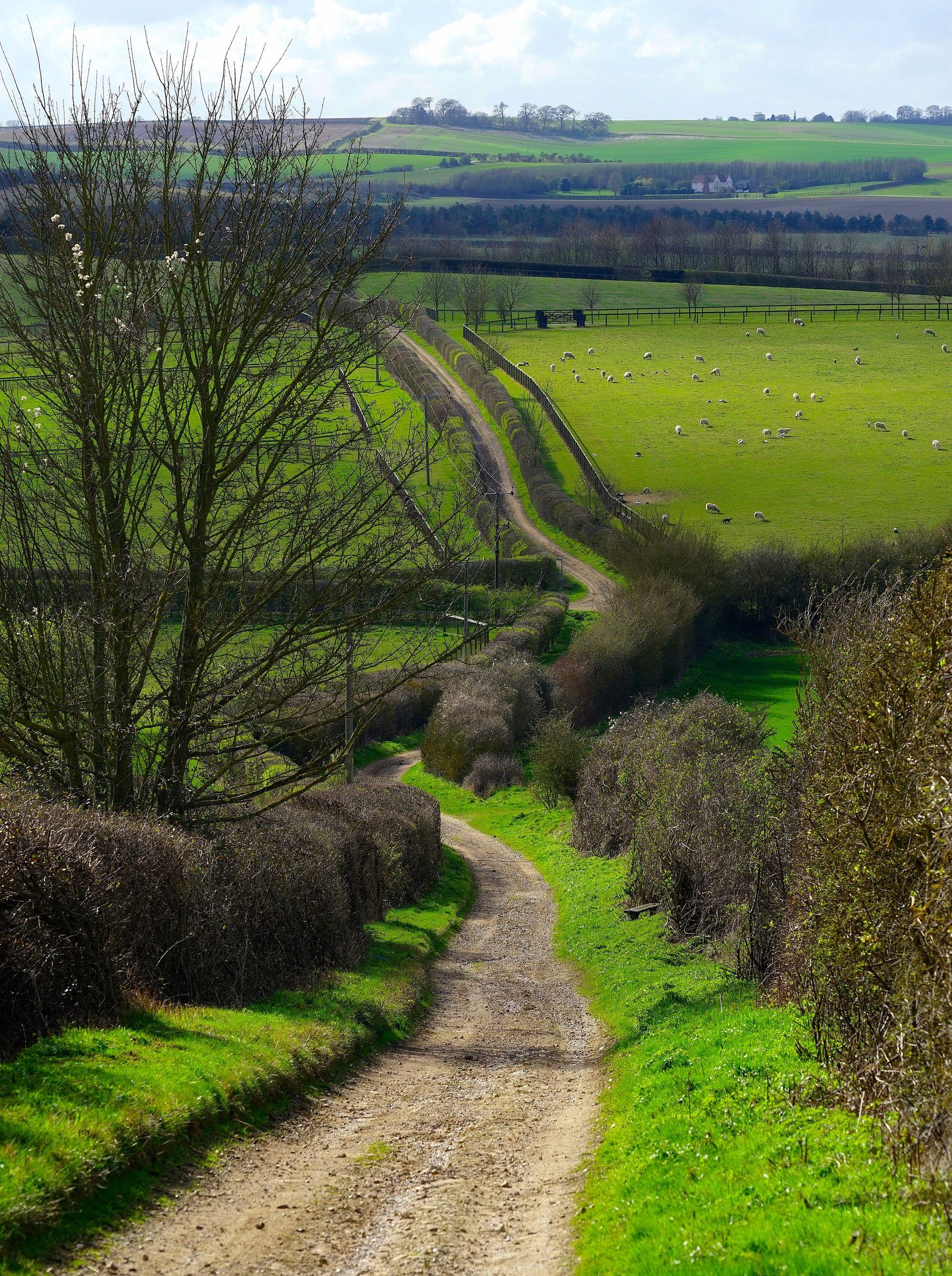 The lane out of Barley (England) by Jason Ballard