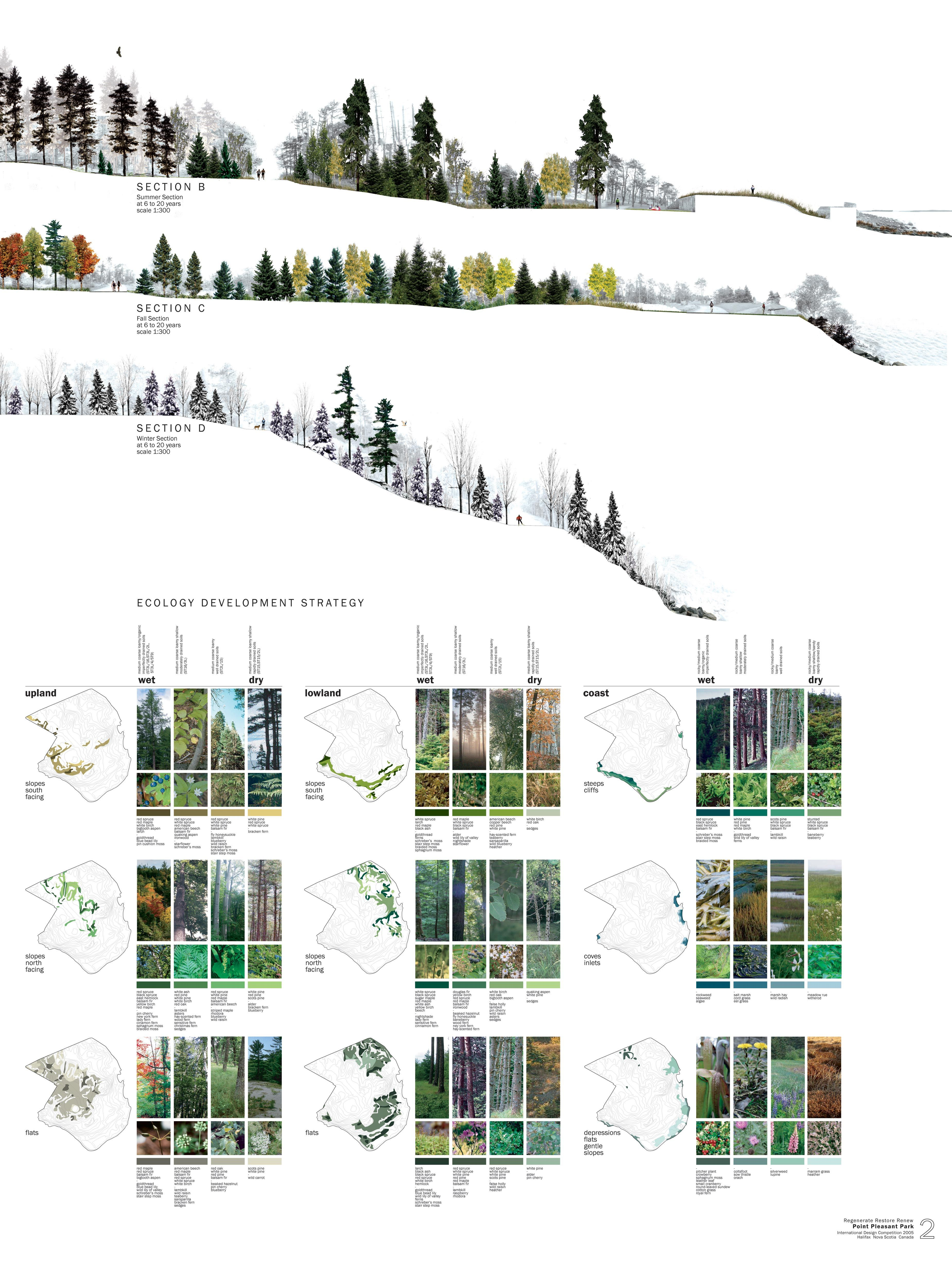 medium resolution of very cool planting ecology diagrams point pleasant park halifax north design office