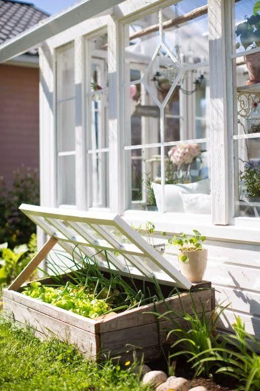 Lovely greenhouse ❤ | garden | Pinterest | Cold frame, Gardens and ...