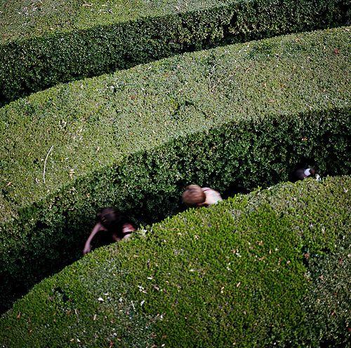 #thinkcolorfully maze