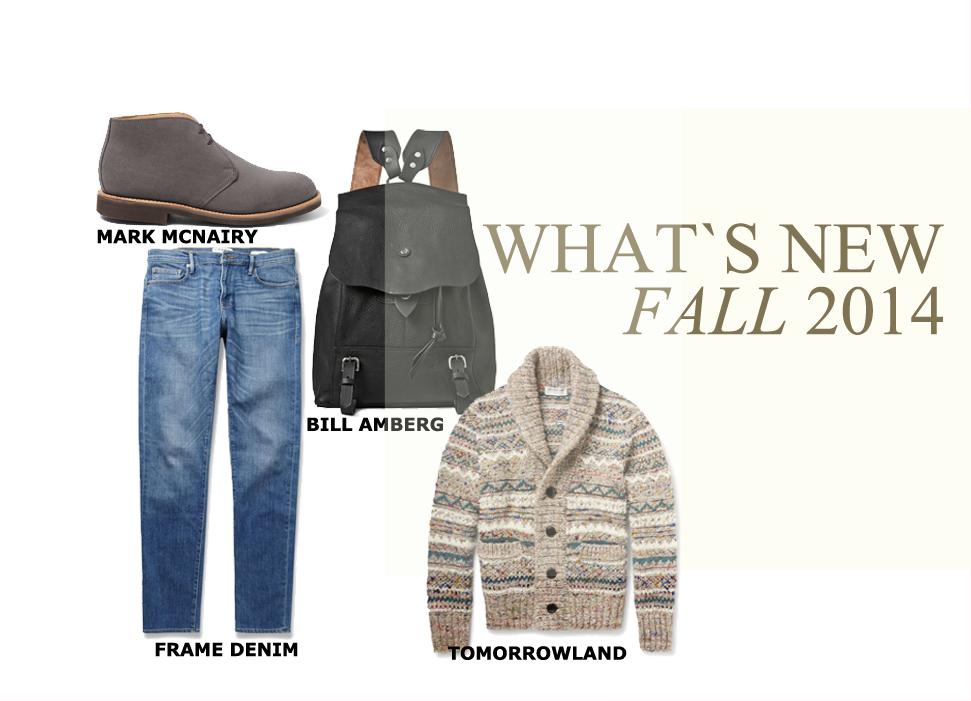 Fashion Men Fall 2014 #fall #2014 #men #fashion #new #shoes #mark #mcnairy #frame #denim #bill #amberg #tomorrowland