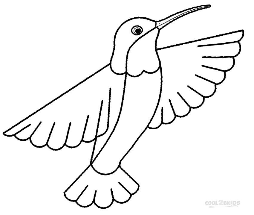 Hummingbird Coloring Pages Hummingbird Colors Bird Coloring