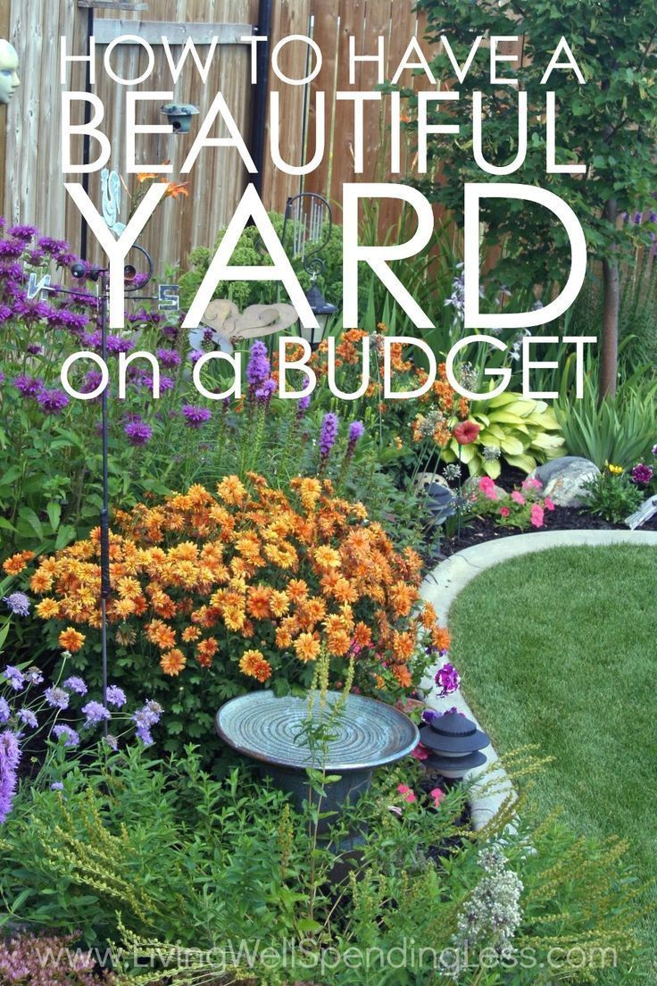 How To Have A Beautiful Yard On A Budget Think Having A Fancy Yard Is Only For Rich People Think Again W Budget Landscaping Diy Landscaping Landscaping Tips
