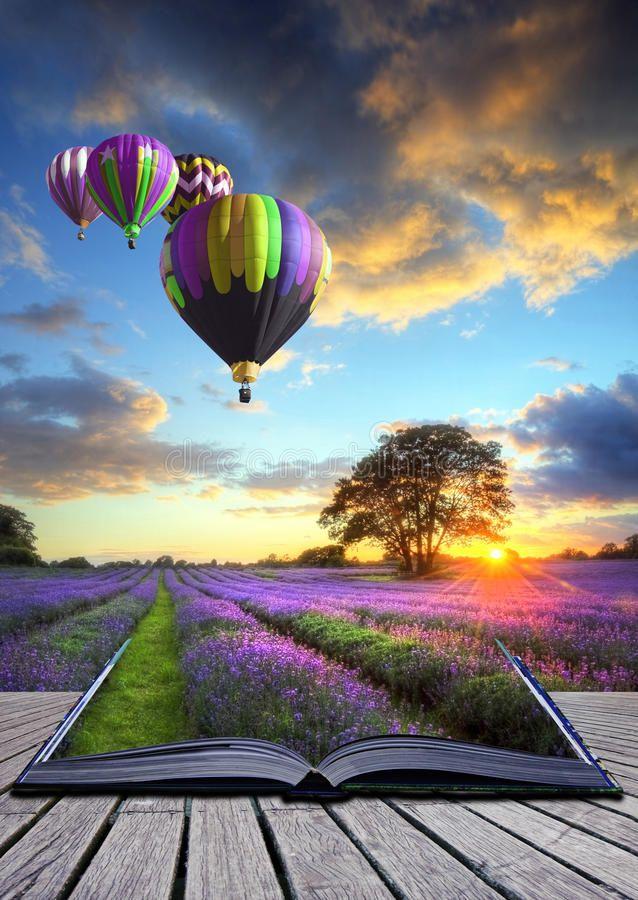 Hot air balloons lavender landscape magic book. Hot air