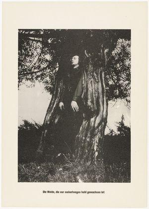Sigmar Polke with Christof Kohlhöfer. The Tree, For My Sake, Has Grown Up Hollow (Der Baum, der meinetwegen hohl gewachsen ist) from .....Higher Beings Ordain (.....Höhere Wesen befehlen) 1968