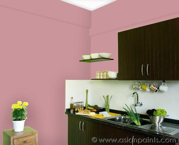 kitchen vintage rose | Apartment colors | Pinterest | Asian paints ...
