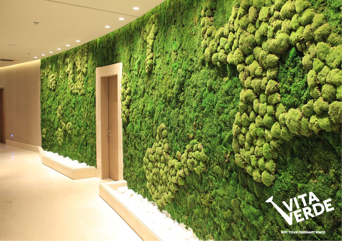 Mosswall Is Easy To Install Does Not Attract Insects And Dust Is Maintenance Free Does Not Need Sunlight Lasts Lon Green Wall Plants Plant Wall Green Wall