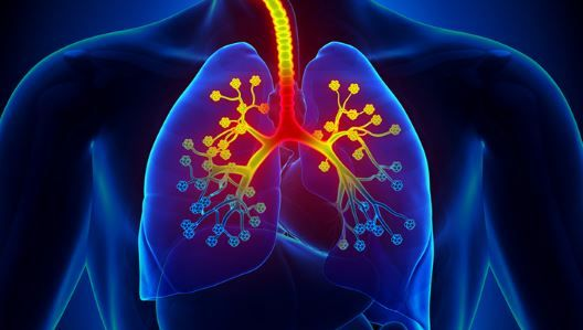 Crackles In Lungs Meaning Crackling Lung Sound When Lying Down