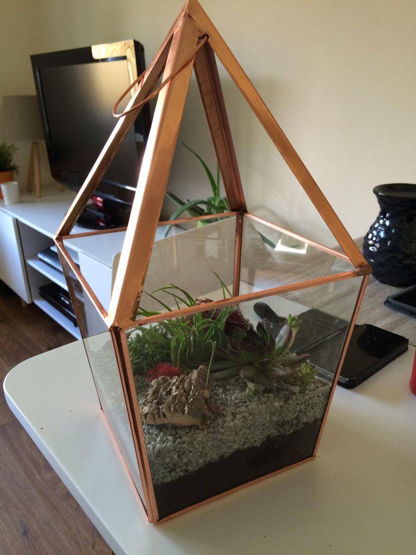 Copper terrarium #terrarium #homemade #cacti #succulents