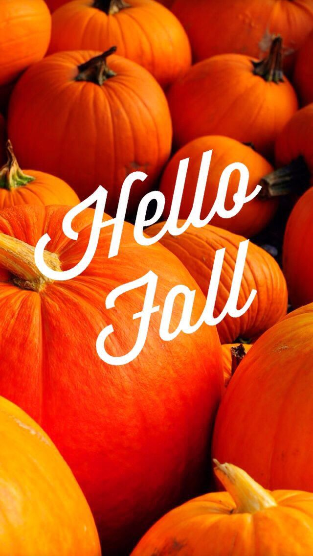 Hello Fall Wallpaper) … Iphone wallpaper fall, Fall