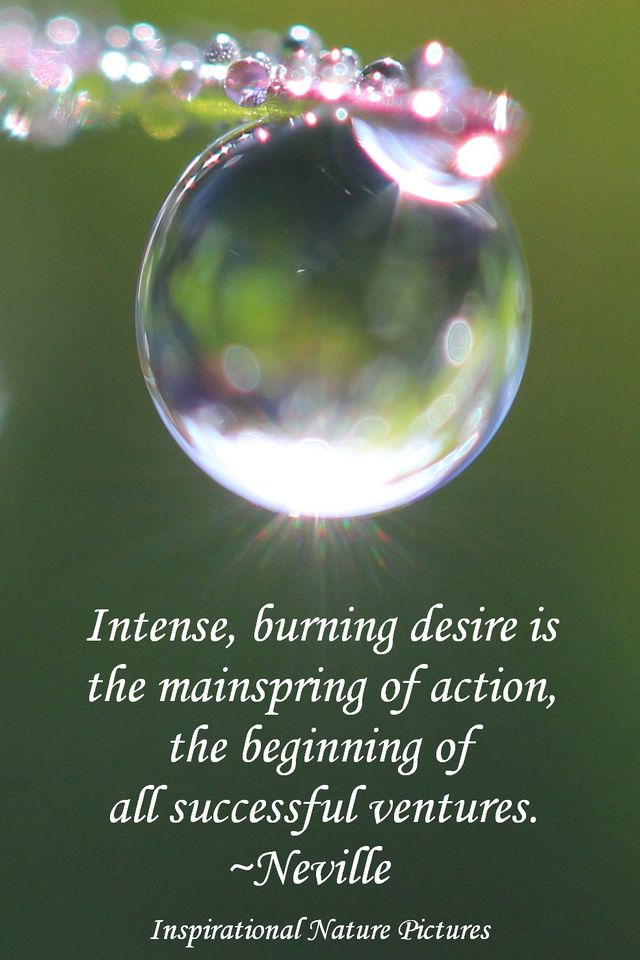 """""""Intense, burning desire is the mainspring of action, the beginning of all successful ventures."""" - Neville"""