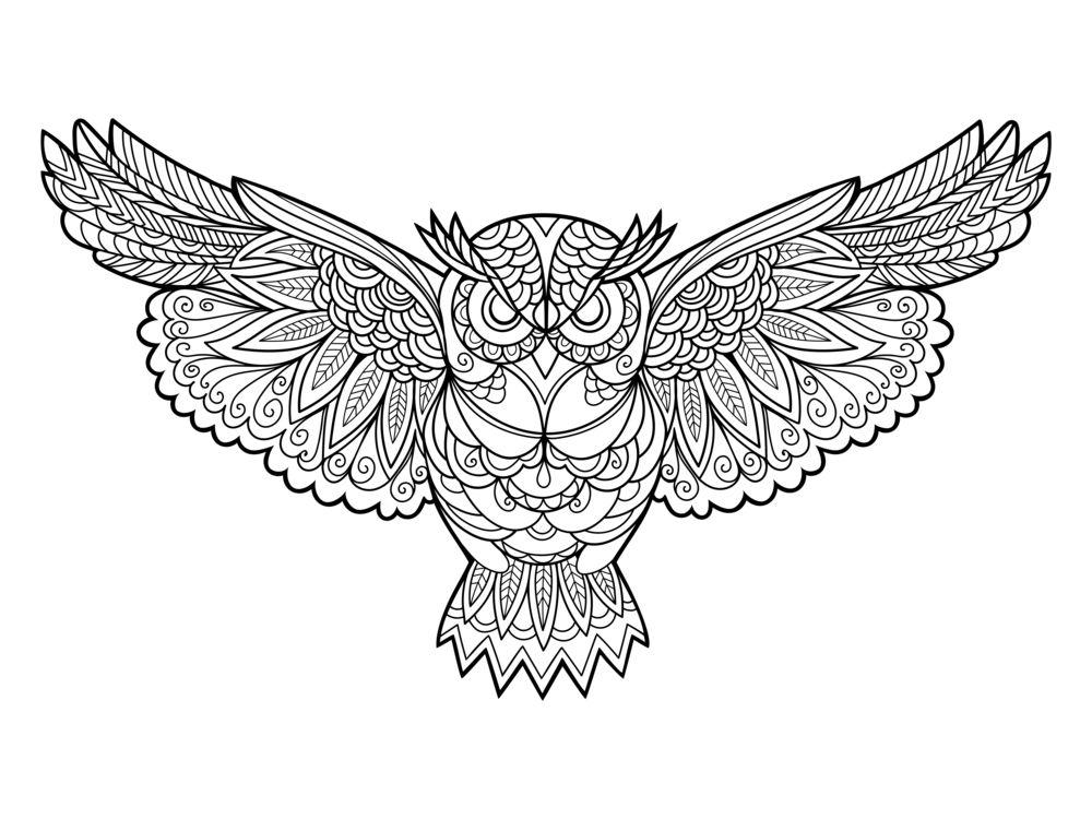 Dibujo De Mandalas De Buhos Imagenes Madalas Alfabetos