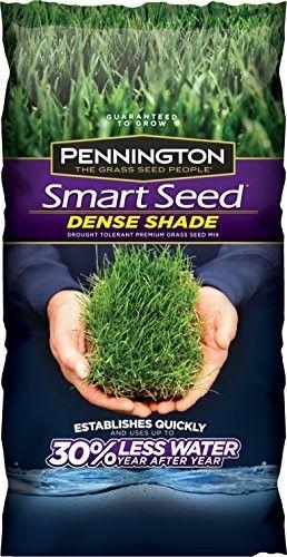 Pennington 100086852 Smart Seed Dense Shade Mix 7 Lb Shade Grass Grass Seed For Shade Grow Grass In Shade