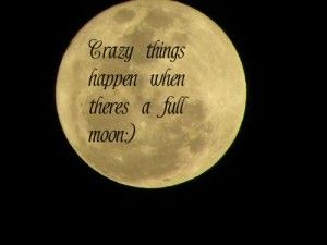 Funny Quotes About The Moon Quotesgram The Moon Moon Quotes