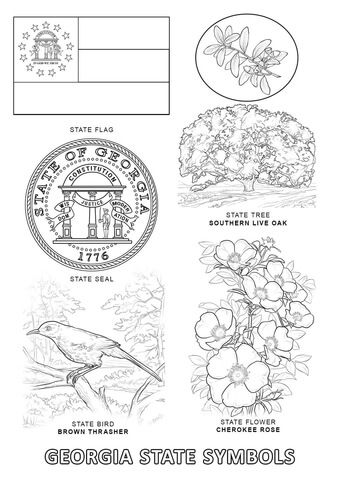 Georgia State Symbols Coloring Page From Category Select 24858 Printable Crafts Of Cartoons