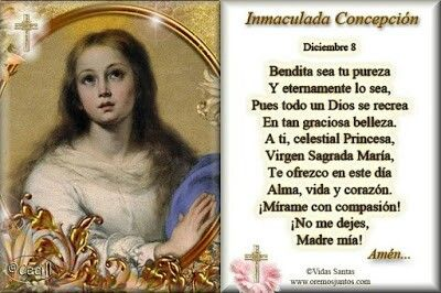 Oración A La Santísima Virgencita La Inmaculada Concepción Oraciones Inmaculada Concepcion Inmaculada