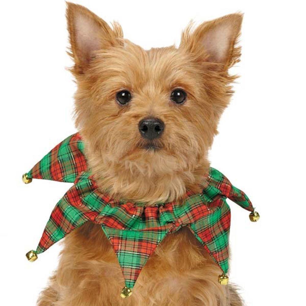 Christmas dog tartan collar jester bell pet puppy cat