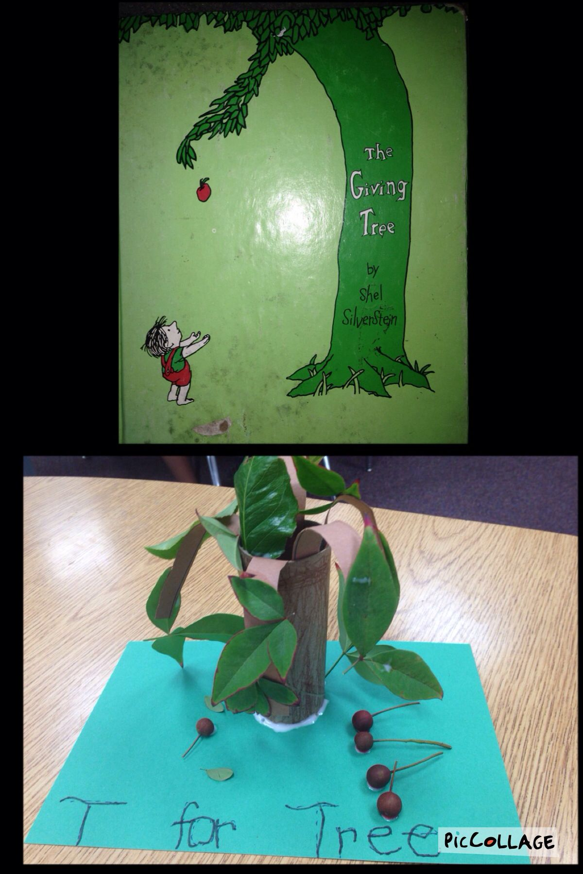 Letter T Preschool Activity T For Tree The Giving Tree
