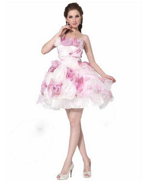 short poofy fancy dresses - Google Search | Premiere Dress ...