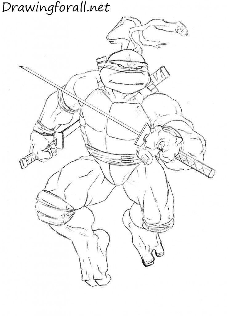 How To Draw Leonardo From Tmnt Ninja Turtles Art Draw Teenage