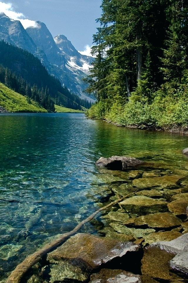 3d Nature Wallpaper For Android Mobile Free Download ...