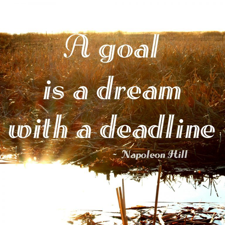Why you Need Healthy Goals – With Free Printable! #HealthyLiving #Healthy #Goals #Dreams