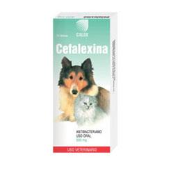 dosis de cefalexina para la infección de la piel