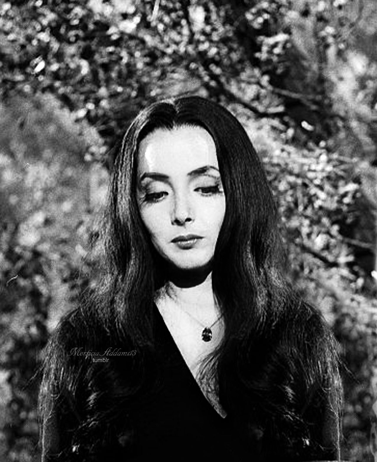 Carolyn Jones born April 28, 1930 (age 88) nudes (41 pictures) Hot, YouTube, butt
