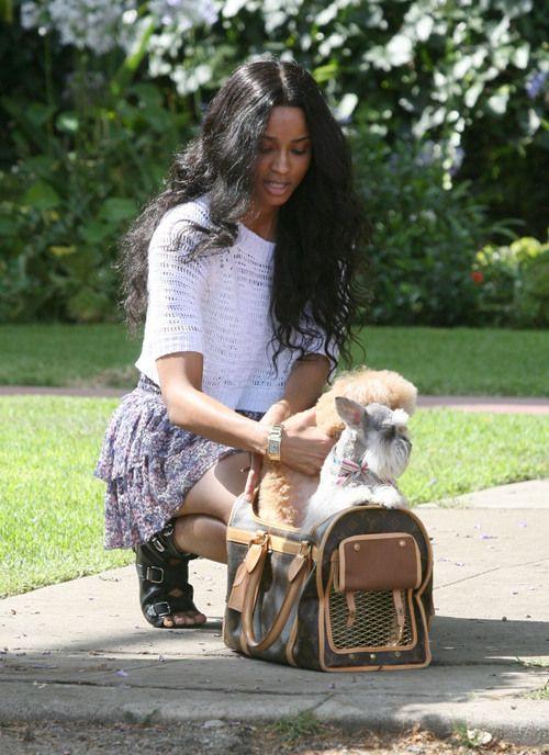 36d6b20f9819 Ciara Louis Vuitton Dog Carrier 50 Bag