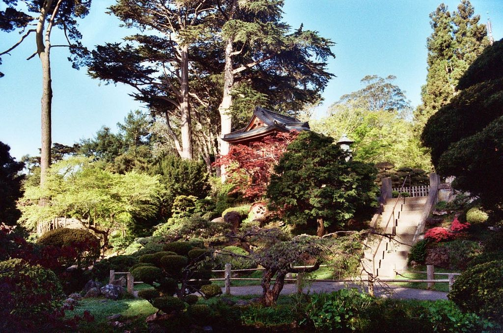 Park Art|My WordPress Blog_Golden Gate Chinese Food Tulsa