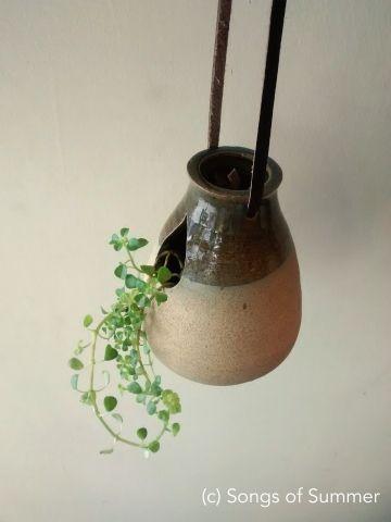 Ceramic hanging planter TD-series Songs of summer  - Garden Store Bangalore