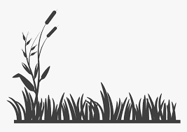 Silhouette Grass Tree Png Images Tree Images Grass Drawing Png Images