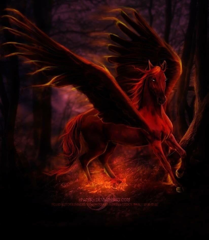 Cheval Aile Creatures Imaginaires Creatures Mythiques Animaux Fantastiques