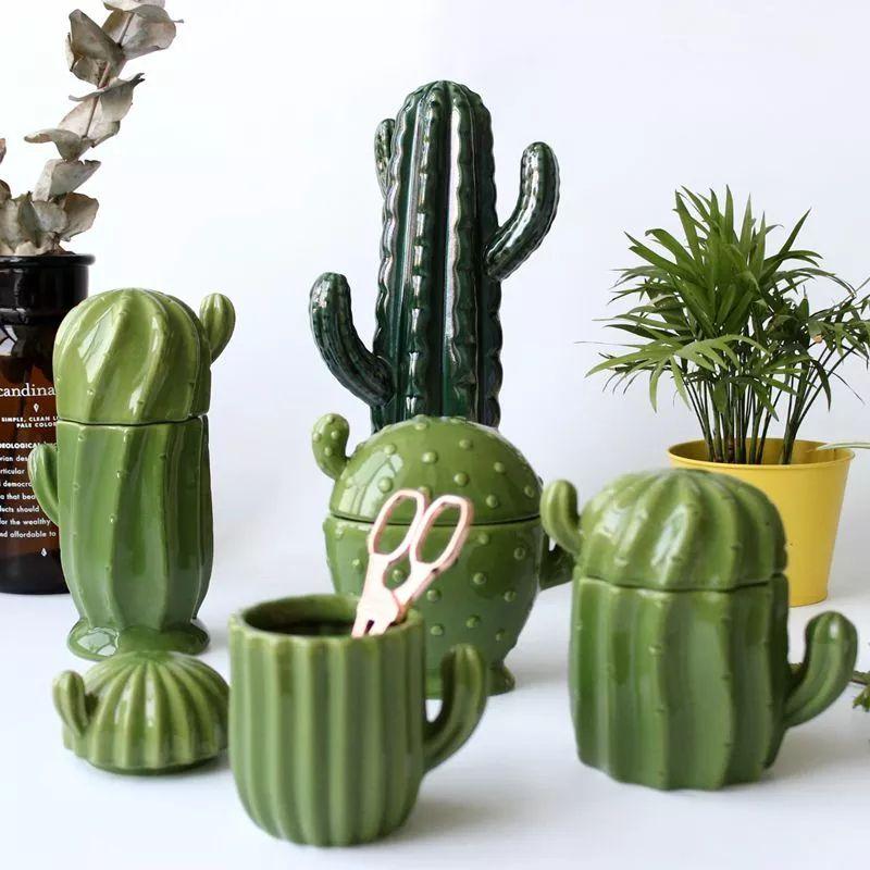 Olha O Que Eu Encontrei No Aliexpress Cactus Cactus Decor Cactus Design