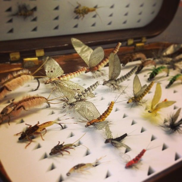 Fly Box From Jazz And Fly Fishing.For More Info On Fly Reels And Fly Fishing Check Out Www