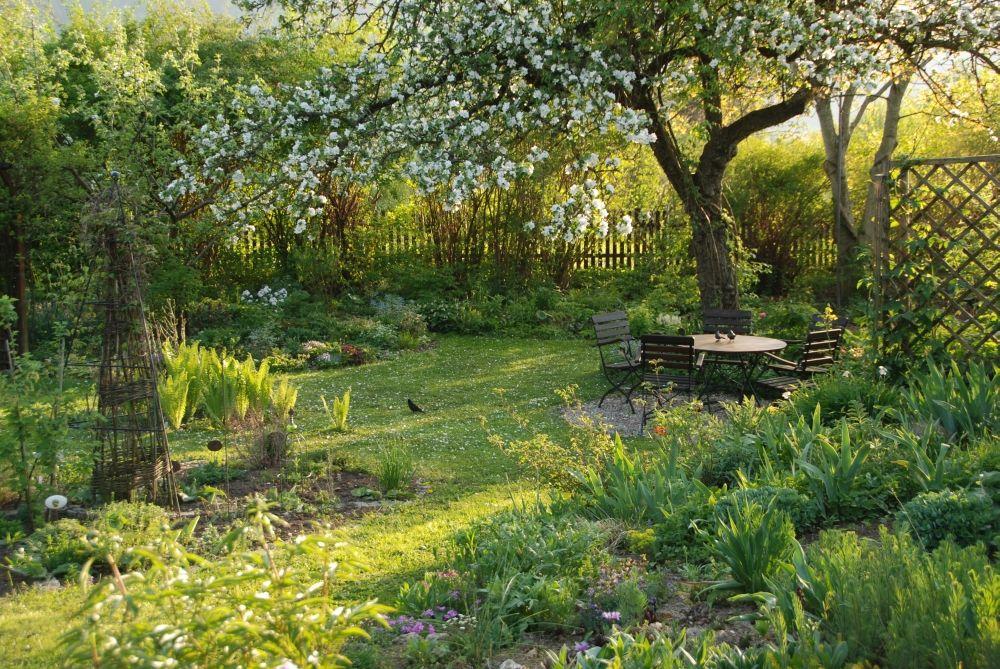 Garten mit sitzplatz unter dem kirschbaum garten und balkon pinterest - Sitzplatz im garten ...